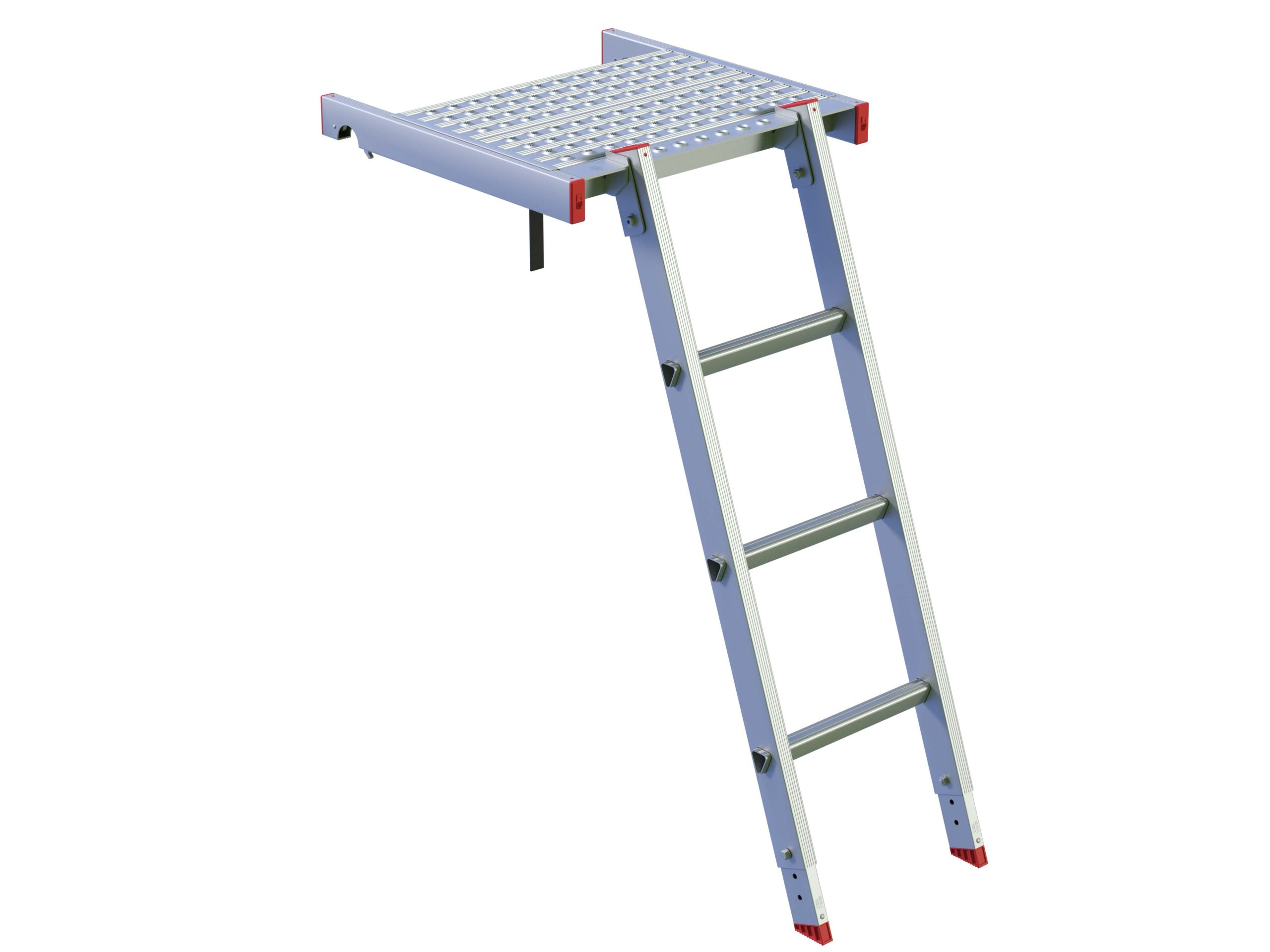 Scaffolder's Step with Ladder
